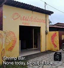 Shrimp Bar