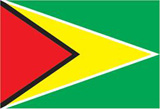 Guyana's National Flag